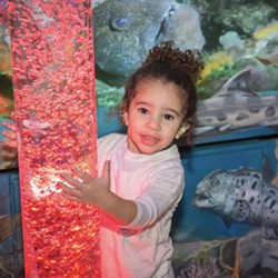 Uploaded by San Luis Obispo Children's Museum