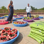 UCO students cultivate a rooftop garden