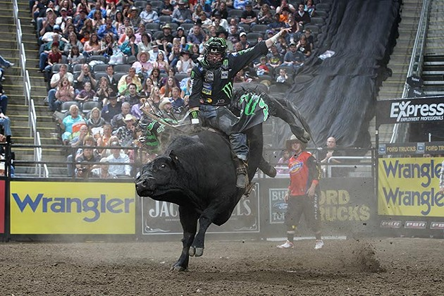 LJ Jenkins rides Boyd/Floyd/C&G/TenEyck's Tremors for 88.5 during the first round of the Kansas City Built Ford Tough series PBR. Photo by Andy Watson - ANDY WATSON