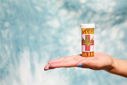 An unidentifiable womans hand holds Medical Marijuana aka Pot, Dope, Mary Jane, Joints, Wacky Weed, Loco Weed, Ganja, Medicine, Bud, Shake, herb, cannabis, purple kush, kush, thc, prescription. - BIGSTOCK