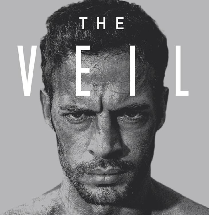 The-Veil-1-web.jpg