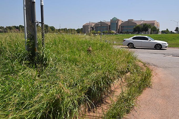 Tall grass and weeds take over an intersection, almost hiding a fire hydrant, at the corner of McAuley Boulevard and W. Memorial Road. (Mark Hancock)