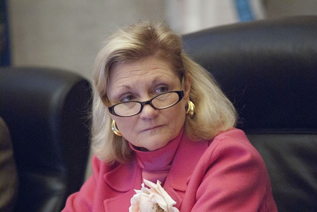 Ward 6 Councilwoan Meg Salyer's seat is up for re-election in March, 2015. - MARK HANCOCK