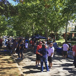 Several area brewers and beer merchants will contribute to the beer garden at this year's Mesta Festa. (provided)