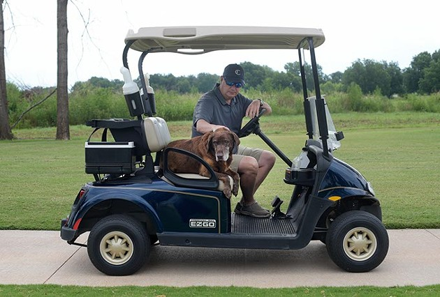 Scout rides on a golf cart with Chris Chesser, golf course director, at Firelake Golf Course in Shawnee. - GARETT FISBECK