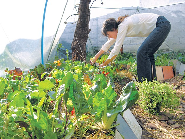 Stephanie Holiman started gardening when she was a teenager and began learning about organic gardening in 2003. - STEPHANIE HOLIMAN / PROVIDED