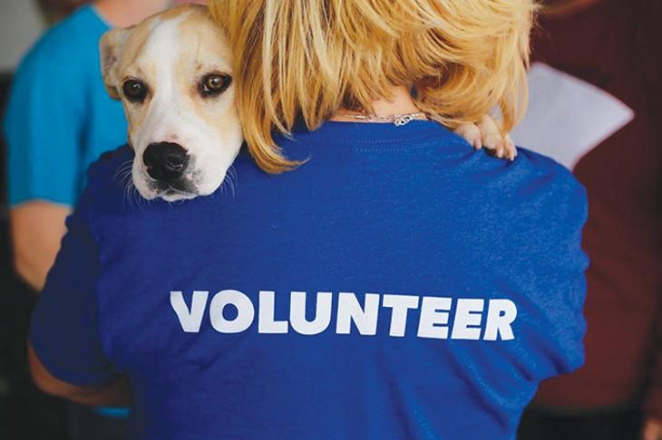 volunteer3_1_.jpg