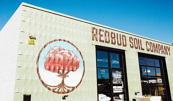 Redbud Soil Company - ALEXA ACE