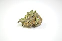 Grape Jam from Ringside Medical - KIMBERLY LYNCH