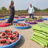 Carissa Jetto, a student at UCO, and Tim Tillman , UCO's sustainability coordinator, look over vegitable gardens in kiddy pools growing on a relitivly unused balcony area  at the school's Nigh University Center.  mh