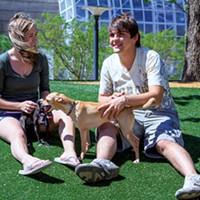 Myriad Botanical Gardens Dog Park is an off-leash dog park in downtown OKC.