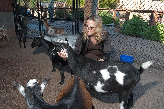 Louisa McCune-Elmore, executive director for the Kirkpatrick Foundation, with goats in the Children's Petting area at the Oklahoma City Zoo in this 1012 file photo.  mh