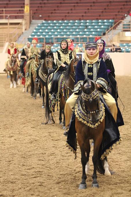 Youth National Arabian Amp Half Arabian Championship Horse