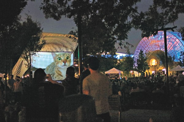 Internet Cat Video Festival on the Great Lawn of the Myriad Botanical Gardens. - PROVIDED