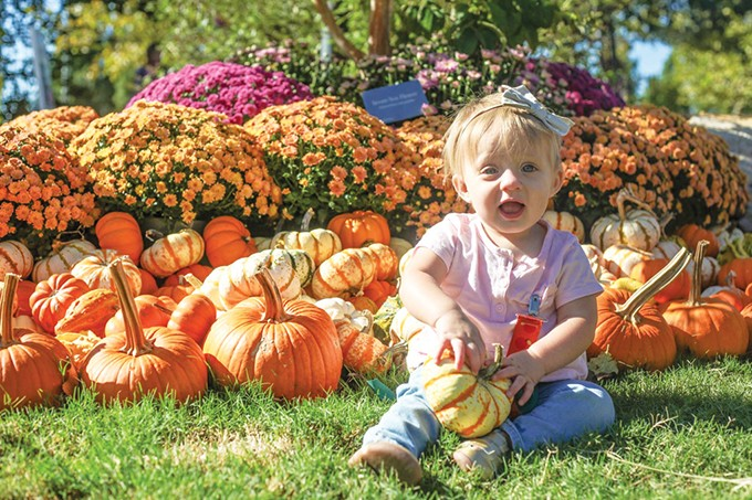 Pumpkinville at Myriad Botanical Gardens - runs Oct. 5-21. - ANDY RINE /  MYRIAD BOTANICAL GARDENS / PROVIDED