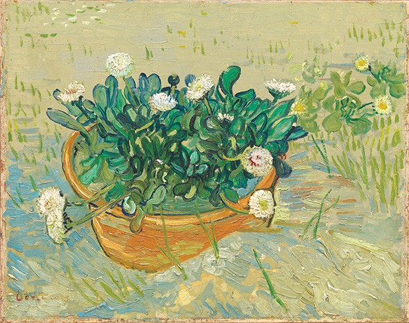 """Daisies, Arles"" by Vincent van Gogh - TRAVIS FULLERTON / VIRGINIA MUSEUM OF FINE ARTS / PROVIDED"