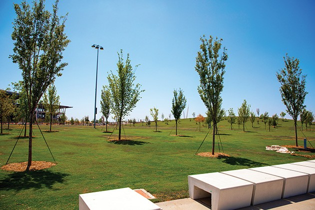 While ready to be open, much of Scissortail Park's landscaping will need time to grow. - PROVIDED