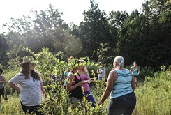 Jackie Dill and Mike Givens teach wildcrafting classes