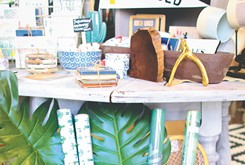 A local blogger teamed up with other local storeowners to open Spruced Cooperative