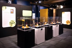 Art and science find common ground in Science Museum Oklahoma's smART Space galleries