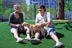 Pet Gazette: Paw parks