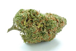 Flower Review: Green Crack