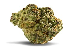 Flower Review: Forbidden Fruit