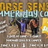 Summer Natural Horsemanship Day Camp @ Horse Sense