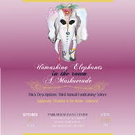 Unmasking Elephants in the Room - A Maskuerade - Uploaded by Deah Caldwell