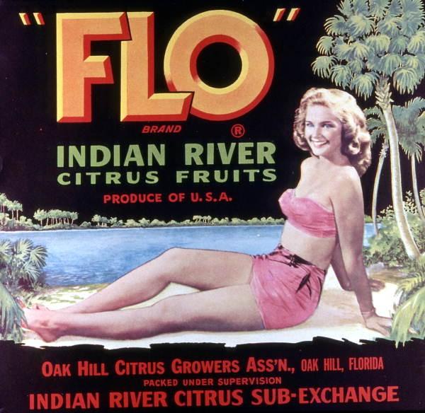 15 cool old Florida citrus crate labels