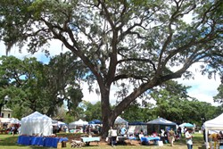 27 lively photos from Central Florida Earth Day at Lake Eola