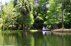 5 peaceful places in Orlando to spend Memorial Day outdoors