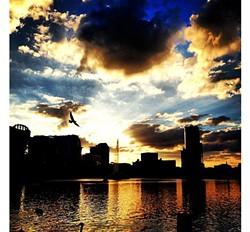 60 epic Orlando Sunsets
