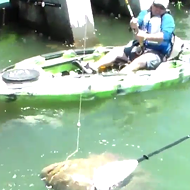 A Florida fisherman caught a disturbingly large fish last weekend