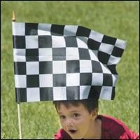 0309checkeredflagjpg