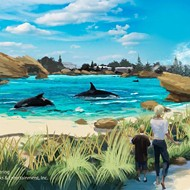 SeaWorld announces plans for new killer whale habitats