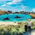 SeaWorld announces plans for new killer whale habitats