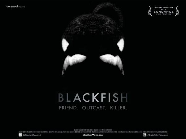 blackfishjpg
