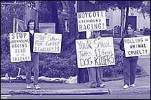 rollinsprotestjpg