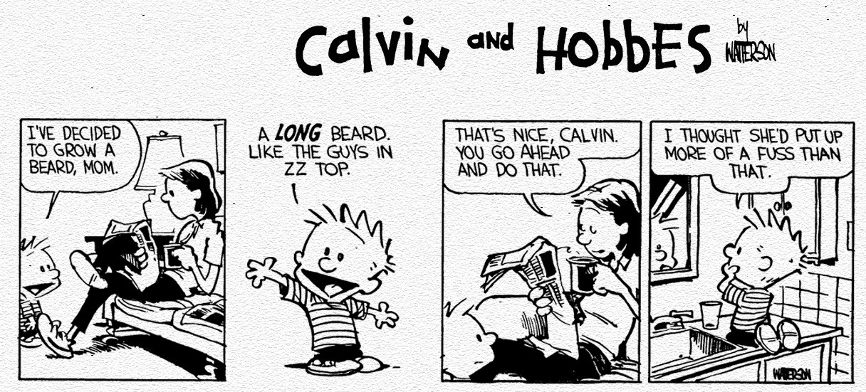 calvin-and-hobbes-random-24017428-1280-800jpg