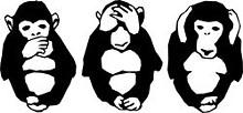 0101_monkeyjpg