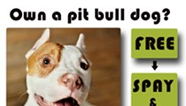 Dolly's Foundation offering FREE spay/neuter for pit bulls