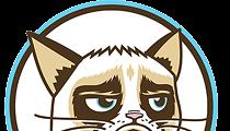 Grumpy Cat gets her own drink: Grumpuccino