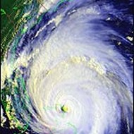 Hurricanes in the hot seat?