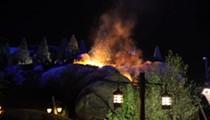 Seven Dwarfs Mine Train catches fire; fireworks blamed