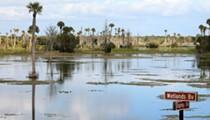 Orlando Wetlands Park: Underneath the scenic vistas lies a water-cleansing powerhouse