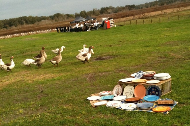 Guests' plates and a few of the residents of Lake Meadow Naturals, OITF 2013