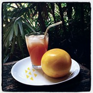 Remix: A fresh take on the Salty Dog cocktail