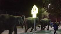 Video: Disney's Dumbo Departs as Ringling Elephants Arrive