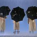 "TCM's ""Singin' in the Rain"" Orlando Screenings (Thurs, 7/12)"